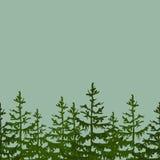 Nahtloser Feldhintergrund mit Tanne Vector Illustration für Ihr Design, Poster, Grußkarte, Fahnen stockfoto