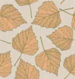 Nahtloser Herbstlaubhintergrund Lizenzfreie Stockfotos