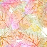 Nahtloser Hintergrund der ausführlichen Blätter ENV 10 Stockbilder