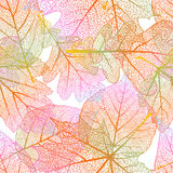 Nahtloser Hintergrund der ausführlichen Blätter ENV 10 Stockbild