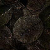 Nahtloser Hintergrund der faulen Blätter. stockfoto