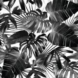 Nahtloser Hintergrund der grafischen Palmblätter Stockfotos