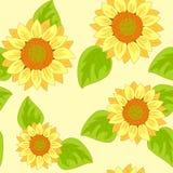 Nahtloser Hintergrund der Sonnenblume stock abbildung