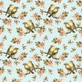 Nahtloser Hintergrund der Weinlese mit Retro- Vögeln im Garten Stockbild