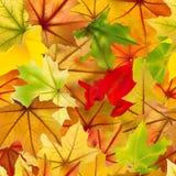 Nahtloser Hintergrund des Herbstes Lizenzfreie Stockbilder