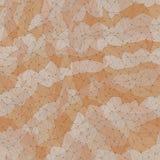 Nahtloser Hintergrund des polygonalen Gitters, Dreiecke in gedämpften Tönen, Verbindungsstruktur Lizenzfreie Stockfotos