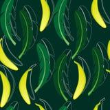 Nahtloser Hintergrund mit Banane und Bananenpalmblättern vektor abbildung