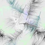 Nahtloser Hintergrund mit Federn Stockbilder