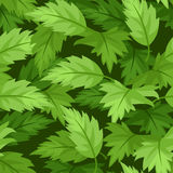 Nahtloser Hintergrund mit grünen Blättern. Stockfoto