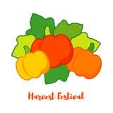 Nahtloser Hintergrund mit Kürbisen thanksgiving Erntefest Lizenzfreie Stockbilder
