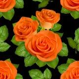 Nahtloser Hintergrund mit orange Rosen auf schwarzem Hintergrund Stockbild