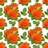 Nahtloser Hintergrund mit orange Rosen auf weißem Hintergrund Stockfoto
