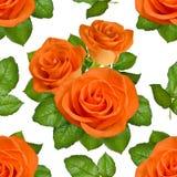 Nahtloser Hintergrund mit orange Rosen auf weißem Hintergrund Stockfotos