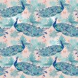 Nahtloser Hintergrund mit schönen Pfaus und Palmblättern lizenzfreie abbildung