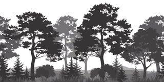 Nahtloser Hintergrund, Sommer Forest Silhouettes Stockfoto