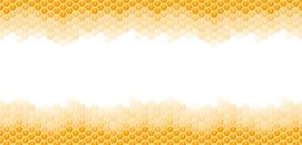 nahtloser Honigkammhintergrund Stockbilder