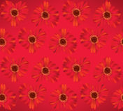 Nahtloser mit Blumenhintergrund. Blumengänseblümchenmuster. Lizenzfreie Stockfotos