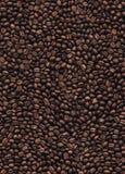 Nahtloser Musterhintergrund der Kaffeebohnen Stockfoto