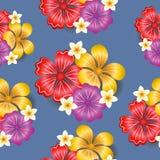 Nahtloser Musterhintergrund der tropischen Blumen Stockbild