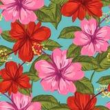 Nahtloser Musterhintergrund des Hibiscus und des tropischen Blattes vektor abbildung