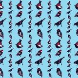Nahtloser Mustervektor der schönen und bunten Vögel Lizenzfreie Stockfotografie