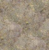 Nahtloser strukturierter Oberflächengrundhintergrund unter heller Sonnenlicht-/Nahaufnahmebeschaffenheit Lizenzfreies Stockfoto