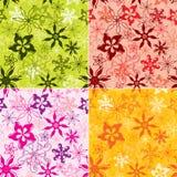 Nahtloser Vektor des Blumenmusters Stockfotos