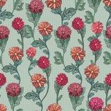 Nahtloser Vektor illustration.chrysanthemums Lizenzfreie Stockbilder