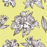Nahtloser vektorblumenmuster Königliche Lilienblumen auf einem gelben Hintergrund Stockfotos