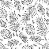 Nahtloser weißer Skizzendschungelniederlassungsmuster-Beschaffenheitsdruck auf weißem Hintergrund Stockfotografie