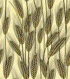 Nahtloser Weizenohrhintergrund Lizenzfreie Stockfotos