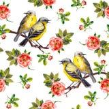 Nahtloser wiederholter Hintergrund der Weinlese mit Vögeln in den Rosen Stock Abbildung