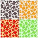 Nahtloses Ahornblatt-Muster Stockbilder