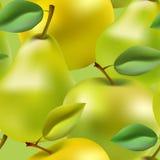 Nahtloses Apfel- und Birnensteigungsmaschenmuster Lizenzfreie Stockbilder