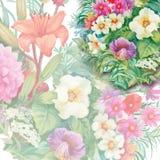 Nahtloses Aquarell-mit Blumenmuster mit Rosen und Wildflowers Stockbilder