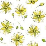 Nahtloses Aquarellmuster der Lindeblüte Lizenzfreies Stockfoto