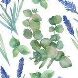 Nahtloses Aquarellmuster von Niederlassungen des bl?henden purpurroten Lavendels und von Niederlassungen des silbernen medizinisc lizenzfreie abbildung