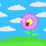 Nahtloses Bild einer Blume. Lizenzfreies Stockfoto