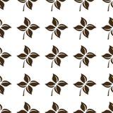 Nahtloses Blumenmuster auf weißer Hintergrundisolierungsniederlassung Stockbilder