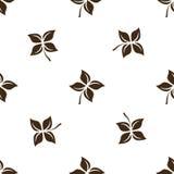 Nahtloses Blumenmuster auf weißer Hintergrundisolierungsniederlassung Lizenzfreies Stockfoto