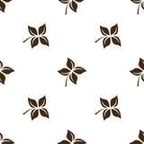 Nahtloses Blumenmuster auf weißer Hintergrundisolierungsniederlassung Lizenzfreies Stockbild