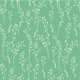 Nahtloses Blumenmuster, Capsellablume, Schäfer ` s Geldbeutel, Capsella Bursa-pastoris, die gesamte Anlage, Hand gezeichneter Vek Vektor Abbildung