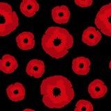Nahtloses Blumenmuster große und kleine rote Mohnblumen blüht auf Schwarzem Stockfotografie