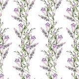 Nahtloses Blumenmuster, herrlicher Kapuzinerkäse, gemalte freihändige Bürste, Aquarell Stockfotografie