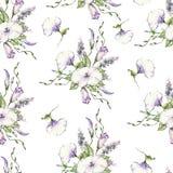Nahtloses Blumenmuster, herrlicher Kapuzinerkäse, gemalte freihändige Bürste, Aquarell Stockbilder
