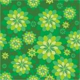 Nahtloses Blumenmuster im Grün Stockbilder