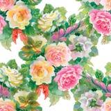 Nahtloses Blumenmuster mit den roten und orange Rosen Stockbilder