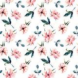 Nahtloses Blumenmuster mit rosa Anemonenblumen und Grünblättern stock abbildung