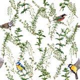 Nahtloses Blumenmuster mit Vögeln Lizenzfreies Stockfoto