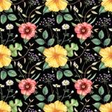 Nahtloses Blumenmuster mit Wildflowers auf schwarzem Hintergrund Hand gezeichnete Aquarellillustration stock abbildung